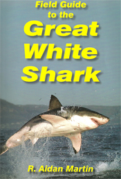 ' ' from the web at 'http://sharkresearchcommittee.com/images/Ricks_field_guide.jpg'